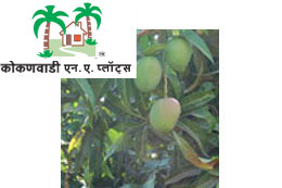 Logo and site photo of Kokanwadi NA plots